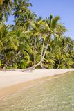 Beautiful tropical beach, coconut palm tree and clean sea water in Thailand Royalty Free Stock Image