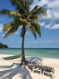 Beautiful tropical beach with coconut palm trees Stock Image