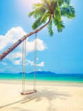 Beautiful tropical beach with coconut palm trees and swing Stock Image