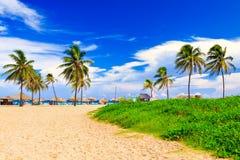Beautiful tropical beach in Cuba Royalty Free Stock Image