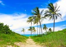 Beautiful tropical beach in Cuba Stock Photo