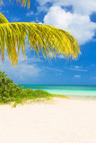 Beautiful tropical beach on the cuban island of Cayo Coco. Beautiful tropical beach on the island of Cayo Coco in Cuba Royalty Free Stock Images