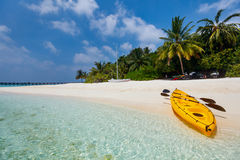 Beautiful tropical beach at exotic island in Maldives Royalty Free Stock Images