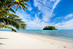 Beautiful tropical beach at exotic island in Pacific Royalty Free Stock Image