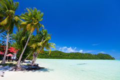Beautiful tropical beach at exotic island in Pacific Stock Images