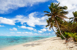 Beautiful tropical beach at exotic island in South Pacific Stock Photography