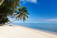 Beautiful tropical beach at exotic island in South Pacific Royalty Free Stock Image