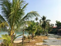 Beautiful tropical beach with green palm trees. Koh Kood Island , Thailand. Tropical beach with green palm trees and pier. Koh Kood Island , Thailand . Sunny day Royalty Free Stock Images