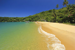 Beautiful tropical beach with green water Stock Images