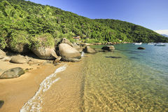 Beautiful tropical beach with green water and stones on shore Royalty Free Stock Photo