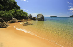 Beautiful tropical beach with green water and stones on shore Stock Images
