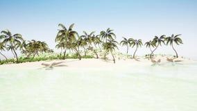 Beautiful tropical beach island vector illustration