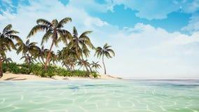Beautiful tropical beach island royalty free illustration