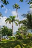 Beautiful tropical beach at island Koh Chang. Thailand Royalty Free Stock Photos