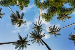 Beautiful tropical beach at island Koh Chang. Thailand Royalty Free Stock Photography
