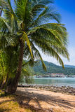 Beautiful tropical beach at island Koh Chang. Thailand Stock Photography