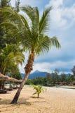 Beautiful tropical beach at island Koh Chang. Thailand Royalty Free Stock Photo