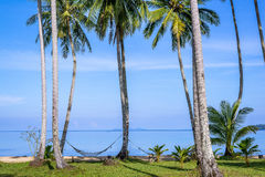 Beautiful tropical beach in island Koh Kood , Thailand Stock Photo