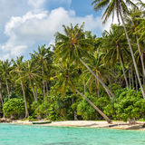 Beautiful tropical beach on Karimunjawa island, Indonesia Stock Photography