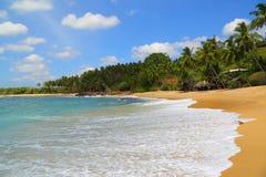 Beautiful tropical beach landscape Stock Photos