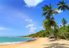 Beautiful tropical beach landscape Royalty Free Stock Image