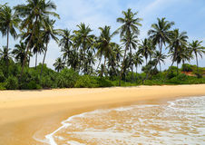 Beautiful tropical beach landscape Stock Image
