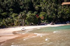 Beautiful tropical beach with lush vegetation Royalty Free Stock Images