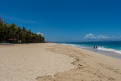 Beautiful tropical beach with lush vegetation Stock Images