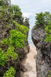 Beautiful tropical beach with lush vegetation Stock Photography