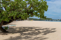 Beautiful tropical beach with lush vegetation Royalty Free Stock Image