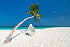 Beautiful tropical beach in Maldives. Beautiful tropical beach on exotic island in Maldives Stock Images