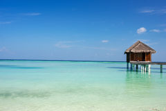 Beautiful tropical beach at Maldives Royalty Free Stock Photography