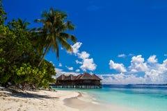 Beautiful tropical beach, Maldives Stock Photo