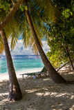 Beautiful tropical beach, Maldives Royalty Free Stock Photography