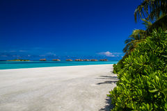 Beautiful tropical beach, Maldives Stock Images