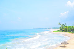 Beautiful tropical beach with nobody, palm trees and golden sand top view. Wave roll into beach with white clean foam. Royalty Free Stock Images