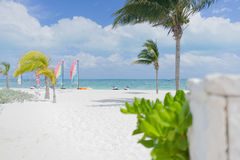 Beautiful Tropical Beach. Beautiful beach with ocean view and white sand Stock Image