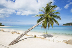 Beautiful tropical beach, palm tree and sea water in island Koh Phangan , Thailand Stock Photo