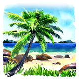 Beautiful tropical beach with palm tree, seascape panorama, watercolor illustration. Beautiful tropical beach with coconut palm tree as relaxing place, seascape Royalty Free Stock Photos