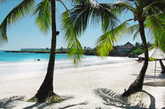 A beautiful tropical beach. With palm trees Stock Photo
