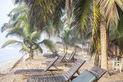Beautiful tropical beach with palm trees. And sunbeds Royalty Free Stock Images