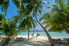 Beautiful tropical beach with palm trees and cabana. At the luxury resort in Maldives Royalty Free Stock Photography