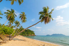 Beautiful tropical beach with palm trees on Koh Chang island Stock Images