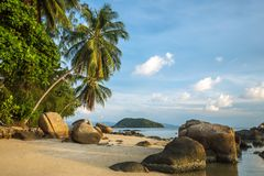 A beautiful tropical beach with palm trees. At Koh Phangan island, Thailand Stock Images