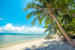 A beautiful tropical beach with palm trees at Koh Phangan island Stock Images