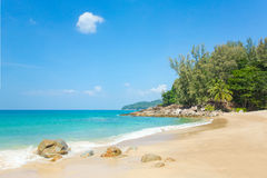 A beautiful tropical beach with palm trees. At Phuket island, Thailand Stock Photography