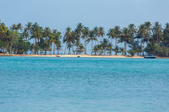 Beautiful tropical beach with palm trees Royalty Free Stock Photo