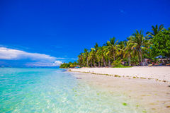 Beautiful tropical beach with palm trees, white sand, turquoise ocean water and blue sky Stock Photography
