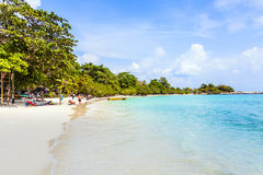 Beautiful tropical beach with palms Stock Image