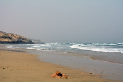 Beautiful tropical beach on paradise Island. Canary Island Fuerteventura Spain. Costa Calma Beach Afternoon shoot Stock Images